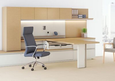 Private Offices: Workwall Desks